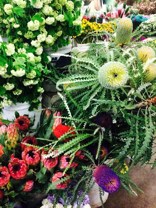 626-flowers1