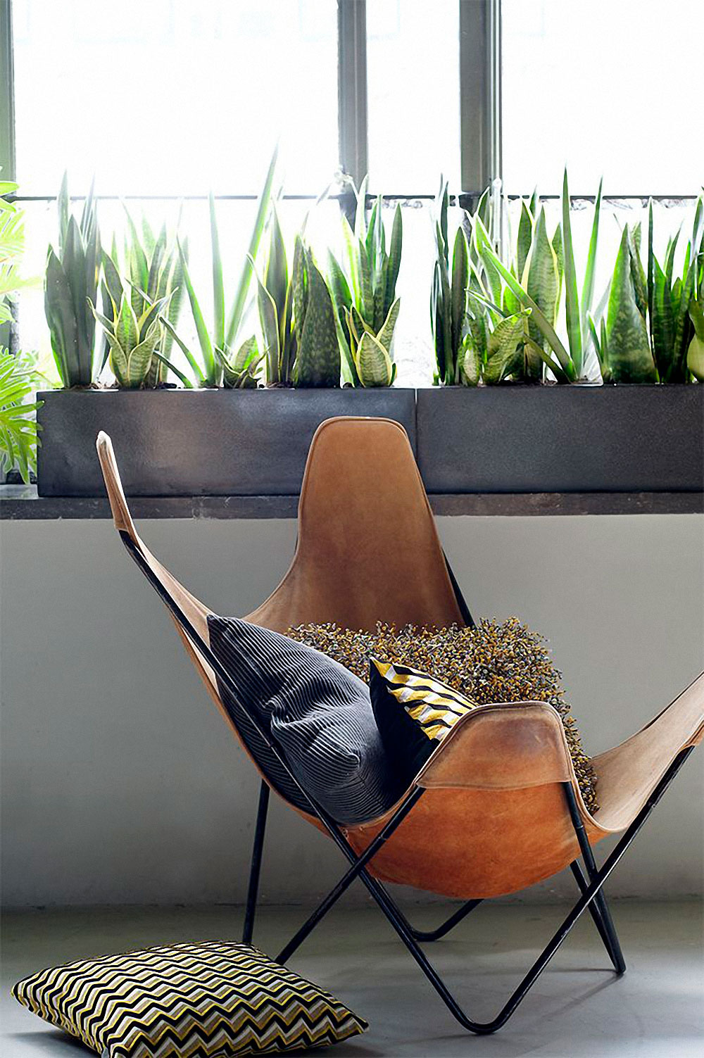 Butterfly chairs - Jestcafe Com Butterfly Chair 7