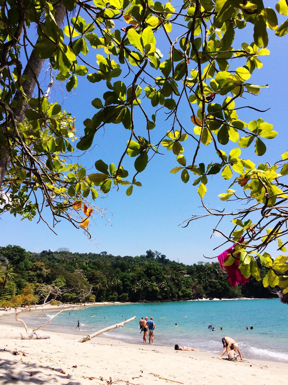 jestcafe.com-costa-rica21