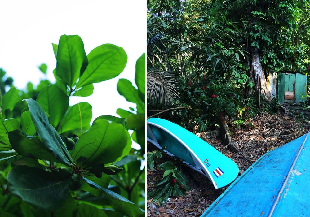 jestcafe.com-costa-rica41