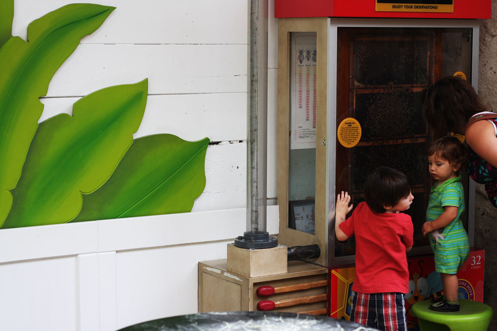 jestcafe.com--kids-space20
