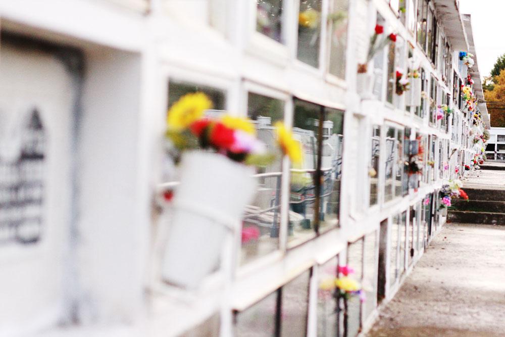 jestcafe--Punta-Arenas-Cemetery64