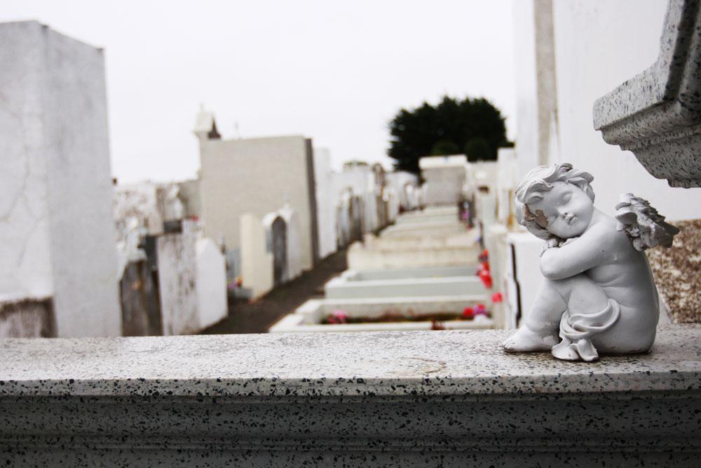 jestcafe.com-cemetery-punta-arenas-60