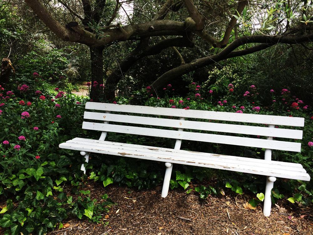jestcafe.com---South-Coast-botanic-gardens-35
