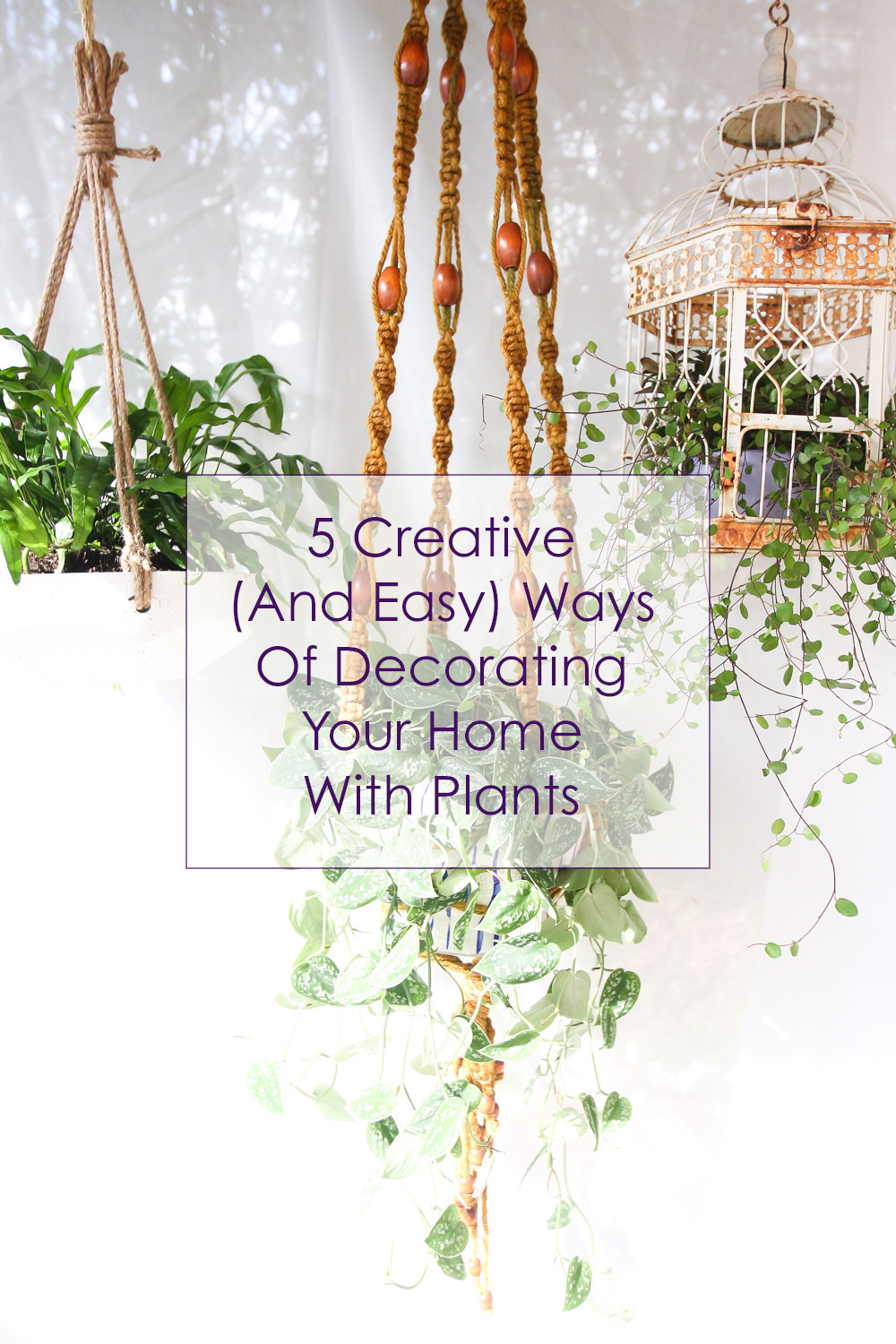 5 Creative (And Easy) Ways Of Decorating Your Home With Plants