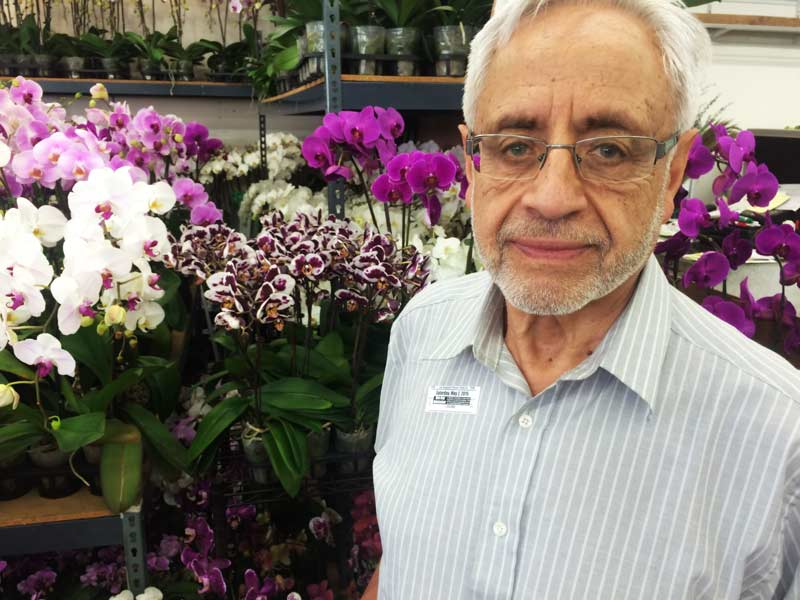 626-Papa-with-orchids
