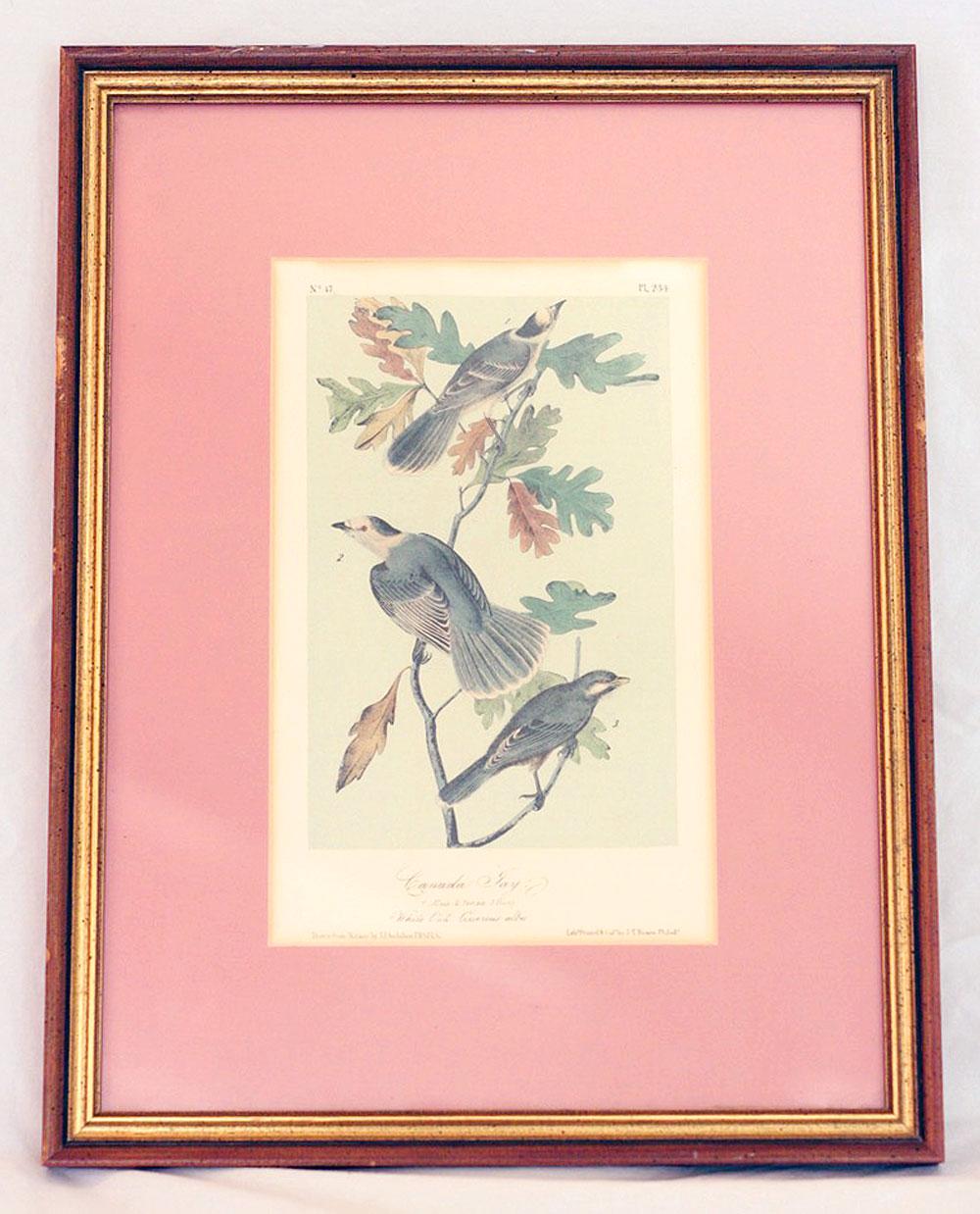 jestcafe-birdprint6