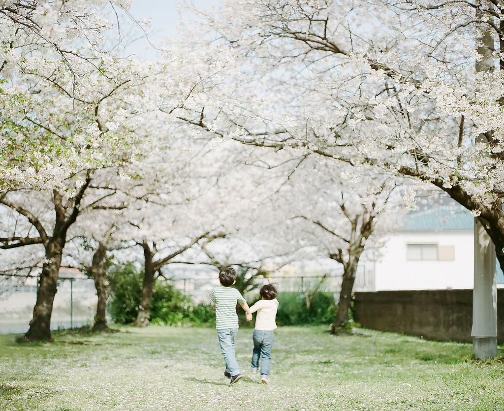 jestcafe.com-Hideaki Hamada3