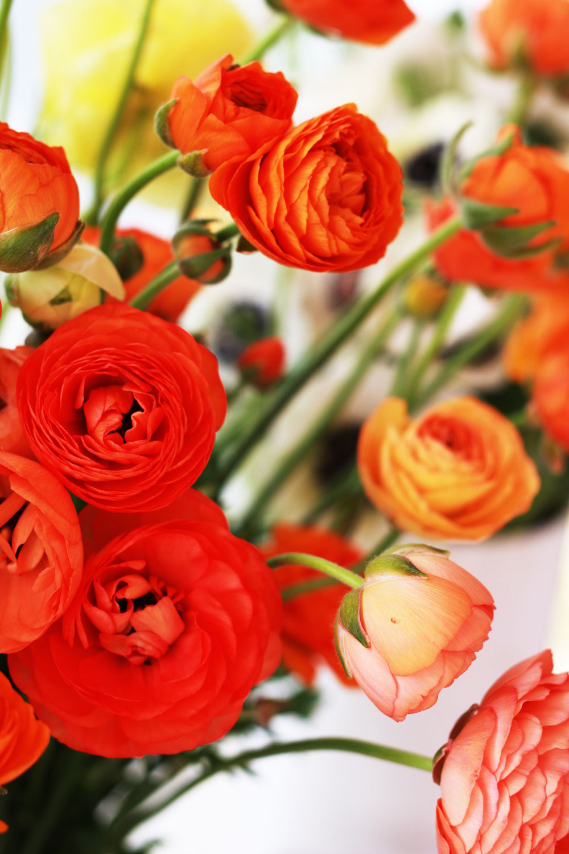 jestcafe.com-flowerarrangementworkshop5