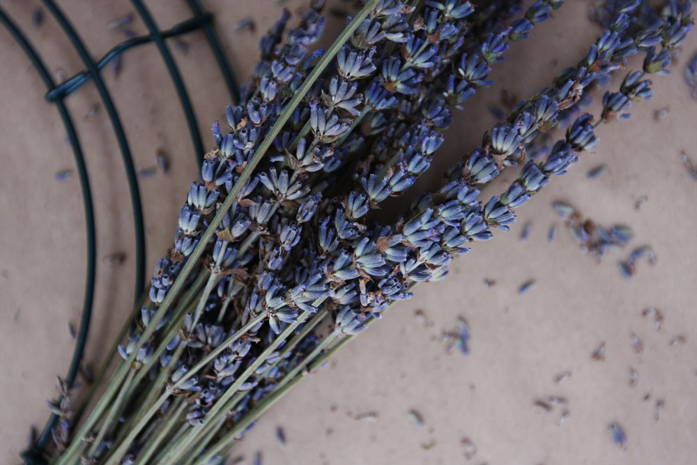 jestcafe.com-lavender-wreath15