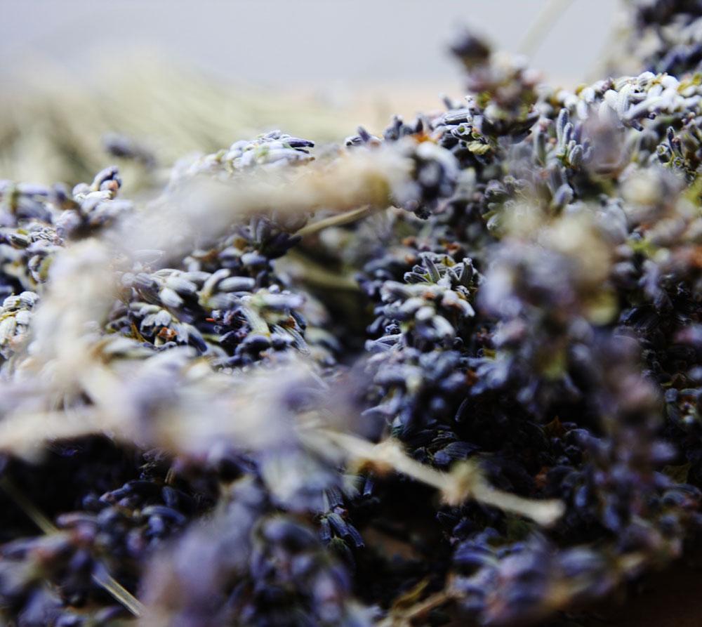 jestcafe.com-lavender-wreath6