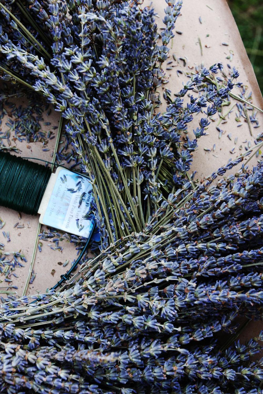 jestcafe.com-lavender-wreath8
