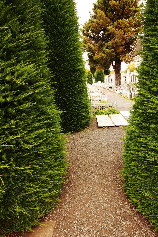 jestcafe--Punta-Arenas-Cemetery14