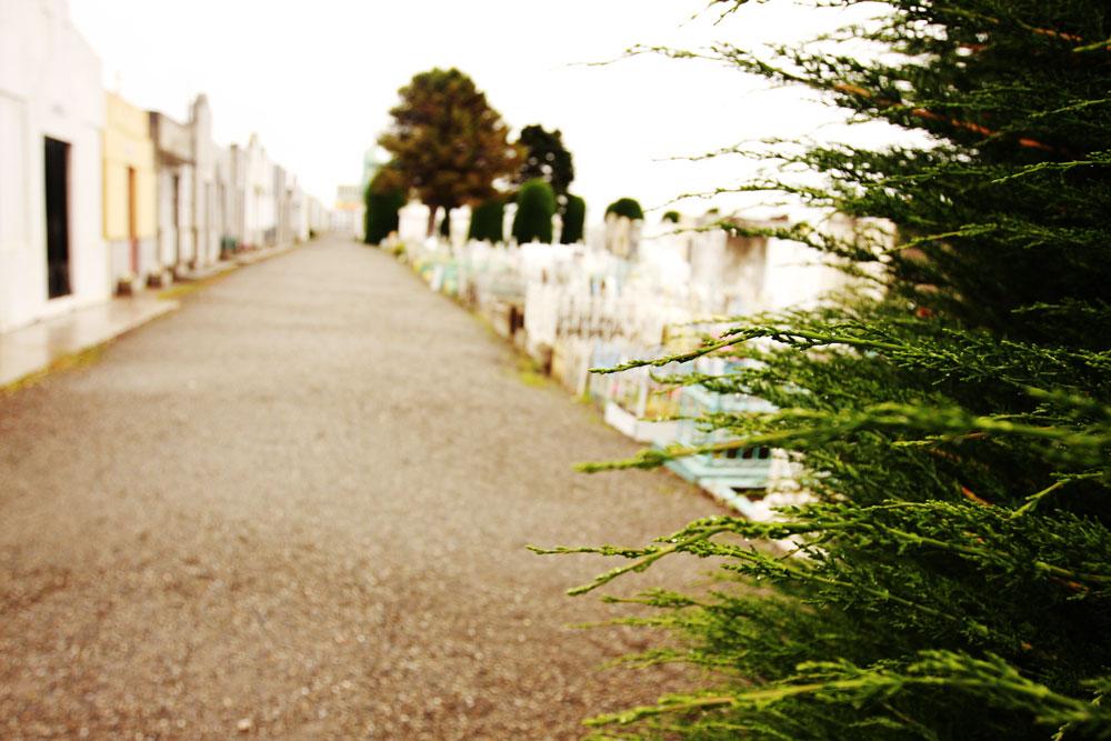 jestcafe--Punta-Arenas-Cemetery20