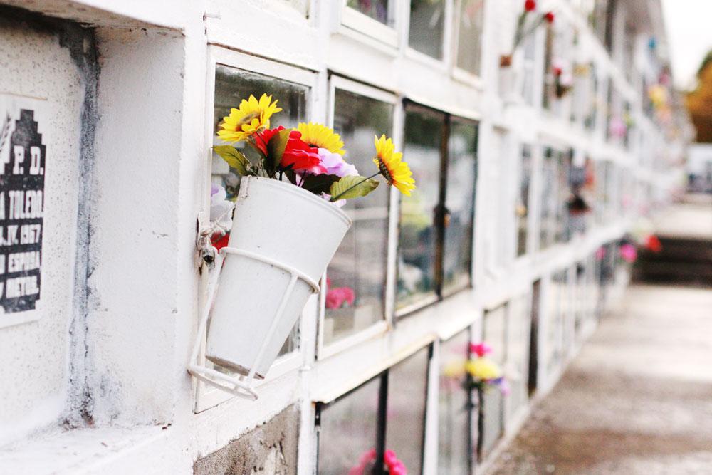 jestcafe--Punta-Arenas-Cemetery63