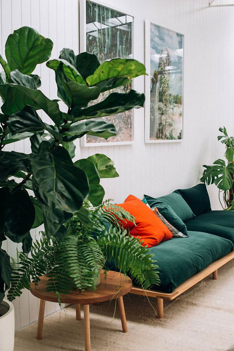 jestcafe.com-colorful-sofas27