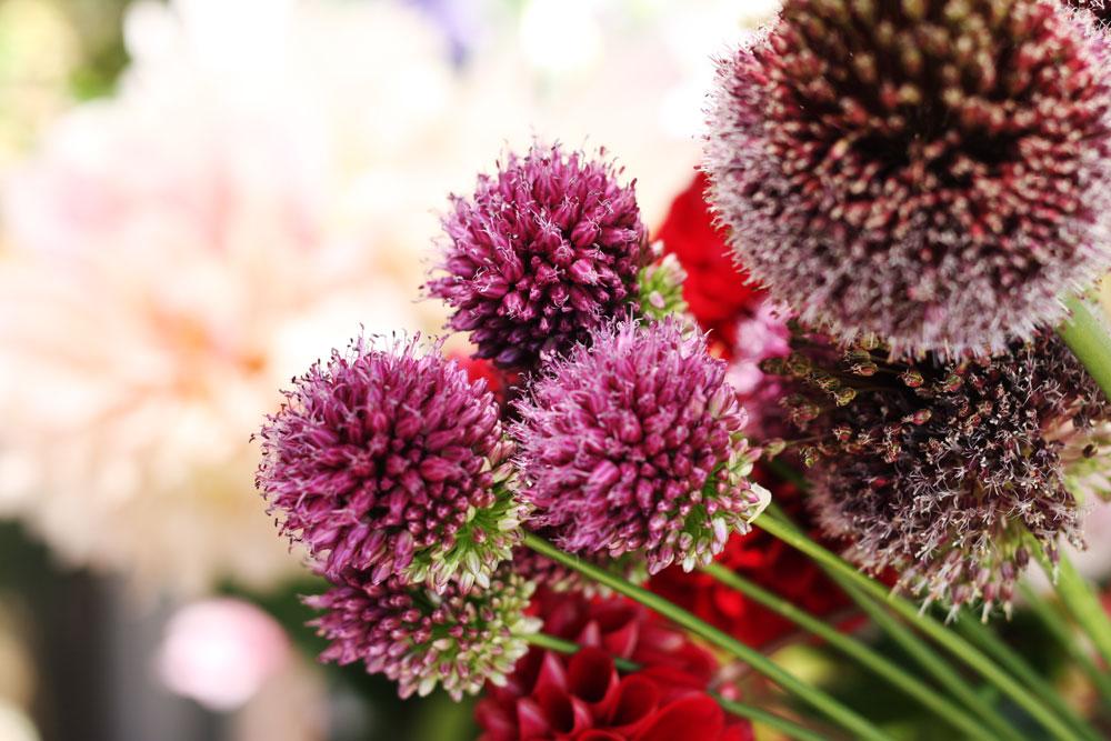 jestcafe.com-flowerdaywithmom5