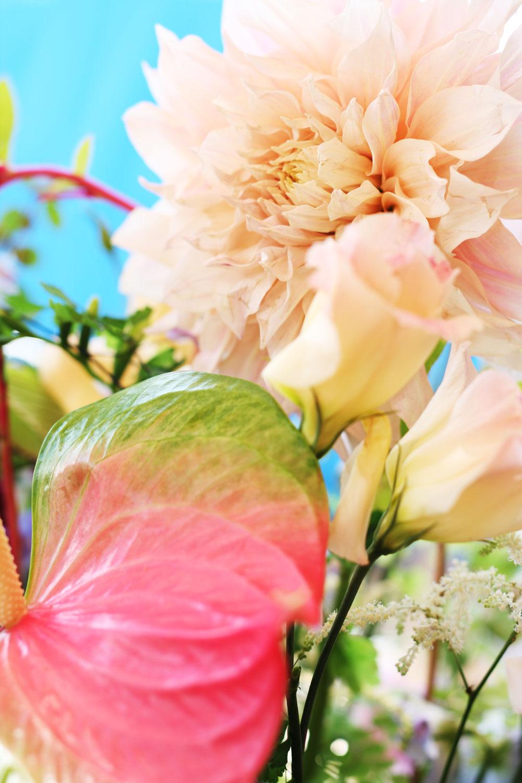 jestcafe.com-flowerdaywithmom8