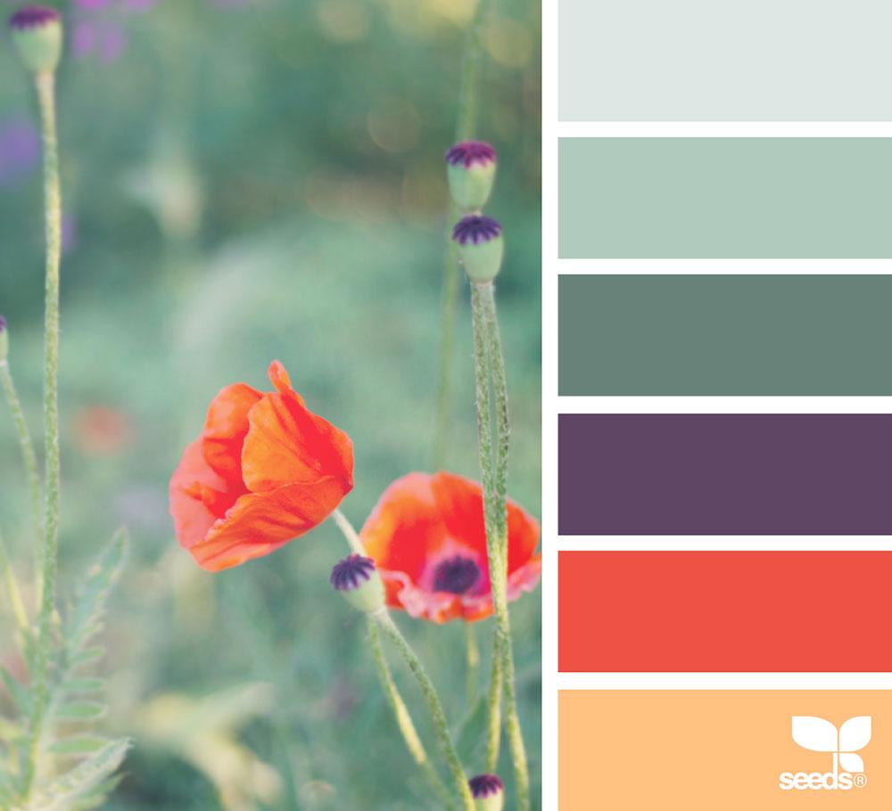 jest-cafe-colorgarden1_150