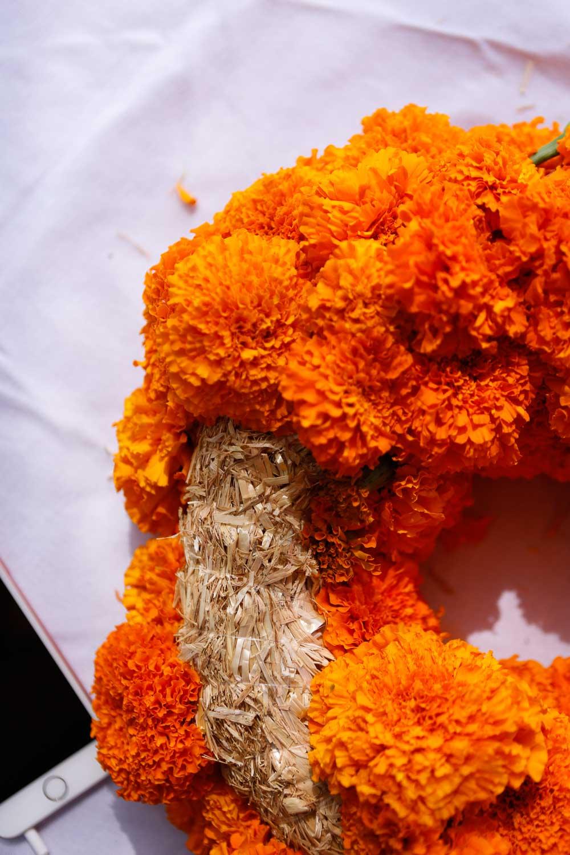 marigold dia de los muertos