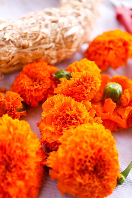 instructions marigold wreath
